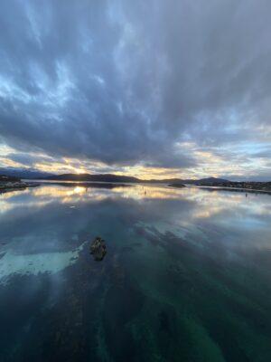 Bilde av Bardu fra Stine Langstrand