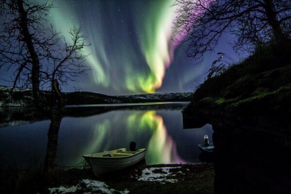 Bilde av Bardu fra Per-Arne Pedersen